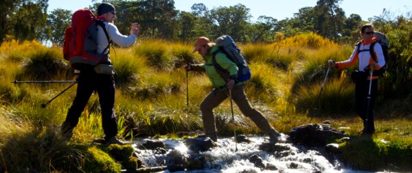 Three hikers crossing a stream during one of our Mount Kenya Treks.