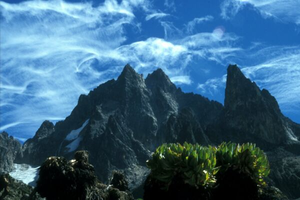 Mount Kenya Trekking - Join us
