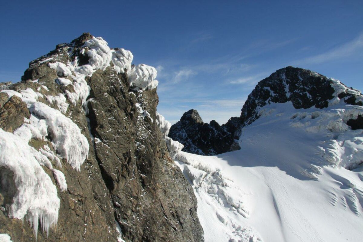 Peak Magherita from Alexandra Peak - Ruwenzori Kongo Expedition 2009 | © SummitClimb - Felix Berg